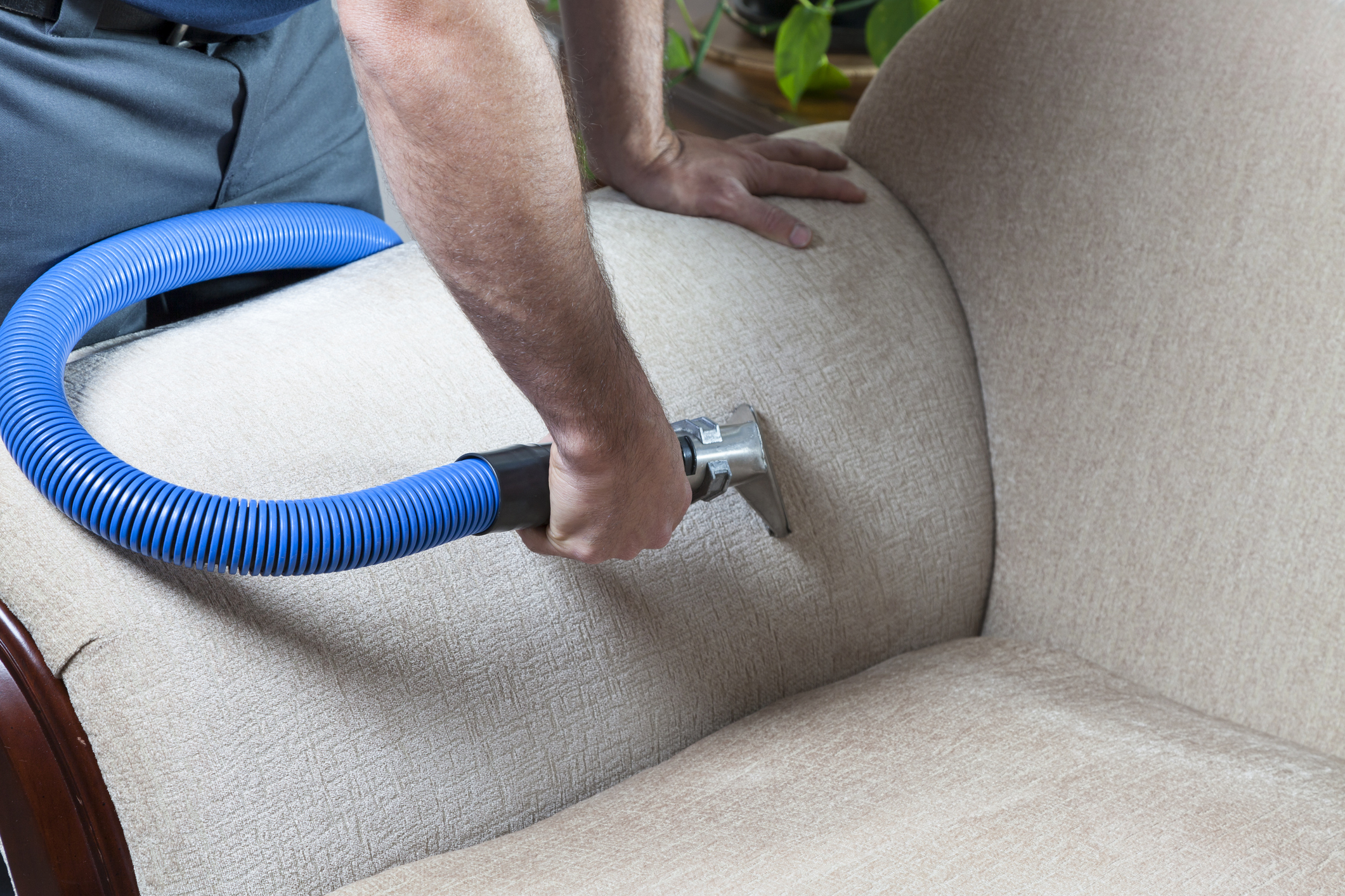 a world of difference carpet cleaning